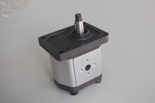 China Industrial Small Rexroth Hydraulic Gear Pumps 2B0 with M6 Thread Depth 13 supplier